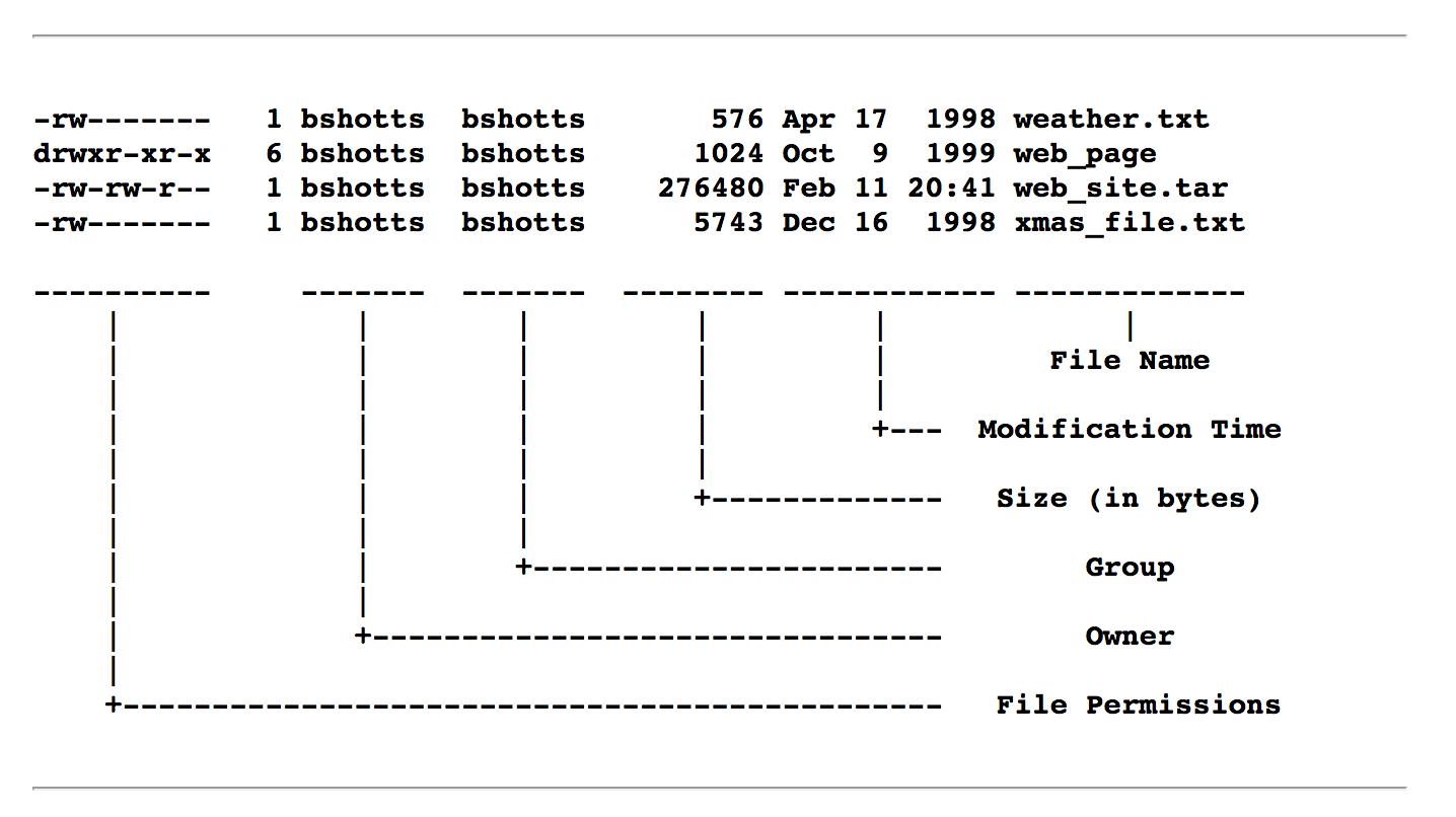 Resultado de imagen de ls output